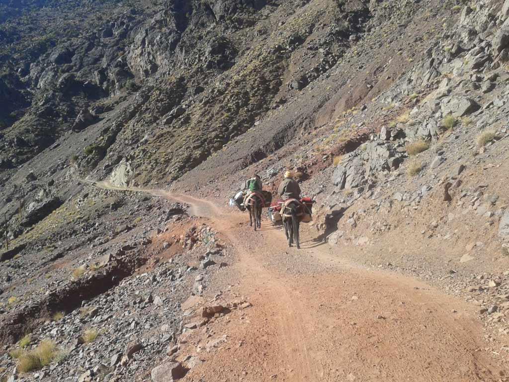 Actividades y Excursiones Gite Ifoulou Tassaout